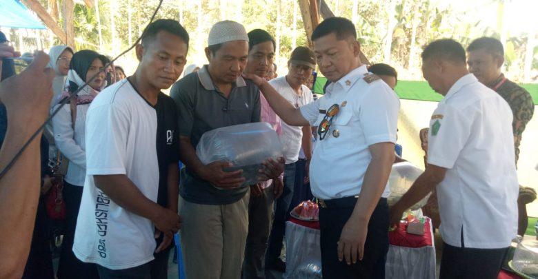 BIBIT IKAN - Wakil Bupati Konawe, Gusli Topan Sabara, ST., MM, saat menyalurkan ribuan bibit ikan di Kecamatan Wonggeduku Barat, Desa Lahotutu, dan Desa Linonggasai, Rabu (18/9/2019).